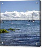 Hilo Bay Acrylic Print
