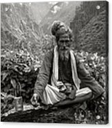 Himalayan Acrylic Print