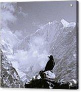 Himalayan Freedom Acrylic Print