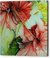 Hiroko's Hibiscus Acrylic Print