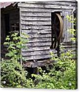 Historic Mill Acrylic Print