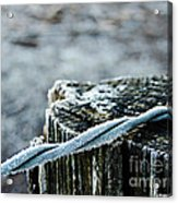 Hoar Frost At Sun Up Acrylic Print