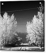 hoar frost covered trees on street in small rural village of Forget Saskatchewan Canada Acrylic Print