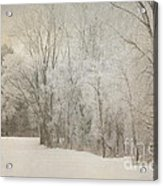 Hoar Frost On A Winters Day Acrylic Print