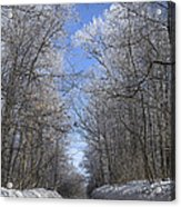 Hoar Frost On Campground Road Acrylic Print