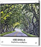 Hobe Sound Fl-bridge Street Banyans Acrylic Print