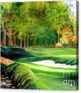 Hole Number10 Acrylic Print by Lamarr Kramer