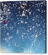 Holiday Card 24 Acrylic Print