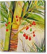 Holiday Palm Acrylic Print