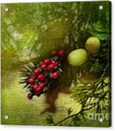 Holiday Season Acrylic Print
