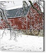 Holly Barn Acrylic Print