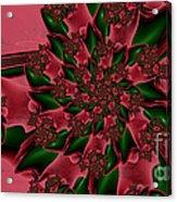 Holly Daze Acrylic Print