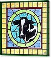 Holstein 4 Acrylic Print