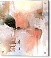 Honey Gilt Acrylic Print