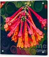 Honeysuckle Bloom In An Abstract Garden Painting Acrylic Print