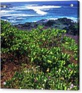Hookipa Beach Flowers Maui Hawaii Acrylic Print