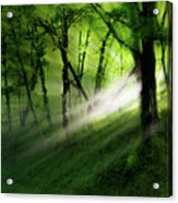 Hope Lights Eternal - A Tranquil Moments Landscape Acrylic Print
