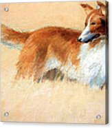 Hopper's Cape Cod Evening -- The Dog Acrylic Print