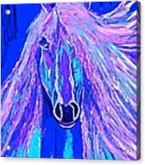 Horse Abstract Blue And Purple Acrylic Print