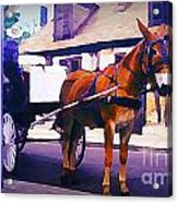 Horse And Carriage In Front Of Lafitte's Blacksmith Shop  Acrylic Print