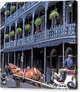 Horse And Carriage In New Orleans Acrylic Print