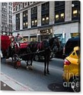 Horse And Carriage Nyc Acrylic Print