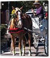 Horse And Cart Acrylic Print