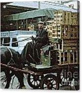 Horse And Cart London 1973 Acrylic Print by David Davies