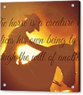 Horse And Rider Silhouette  Acrylic Print