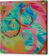 Horse And Spirals In Pink Acrylic Print