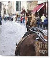Horse carriage in Brugge Acrylic Print