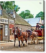 Horse Carriage Acrylic Print