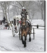Horse Carriages In Snowy Park Acrylic Print