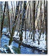 Horse Creek No. 2 Acrylic Print