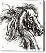 Horse Face Ink Sketch Drawing - Inventing A Horse Acrylic Print