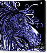 Horse Head Blues Acrylic Print