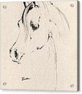 Horse Head Sketch Acrylic Print