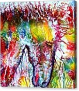 Horse In Abstract Acrylic Print