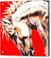 E   P   I   C   U   S    In Red Acrylic Print