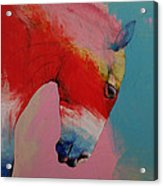 Horse Acrylic Print by Michael Creese