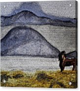 Horse Of The Mountains With Stained Glass Effect Acrylic Print