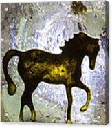 Horse On A Quartz Crystal Acrylic Print