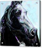 Horse Painted Black Acrylic Print
