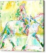 Horse Painting.19 Acrylic Print