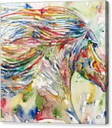 Horse Painting.24 Acrylic Print