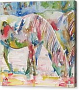 Horse Painting.27 Acrylic Print