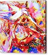 Horse Painting.28 Acrylic Print