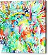 Horse Painting.29 Acrylic Print