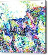 Horse Painting.33 Acrylic Print