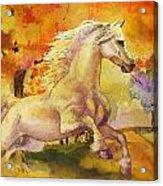 Horse Paintings 003 Acrylic Print